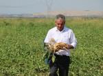 Ziraat Oda Başkanı Fuat Almas;Şeker pancarı alım fiyatları yüzde 25 artı